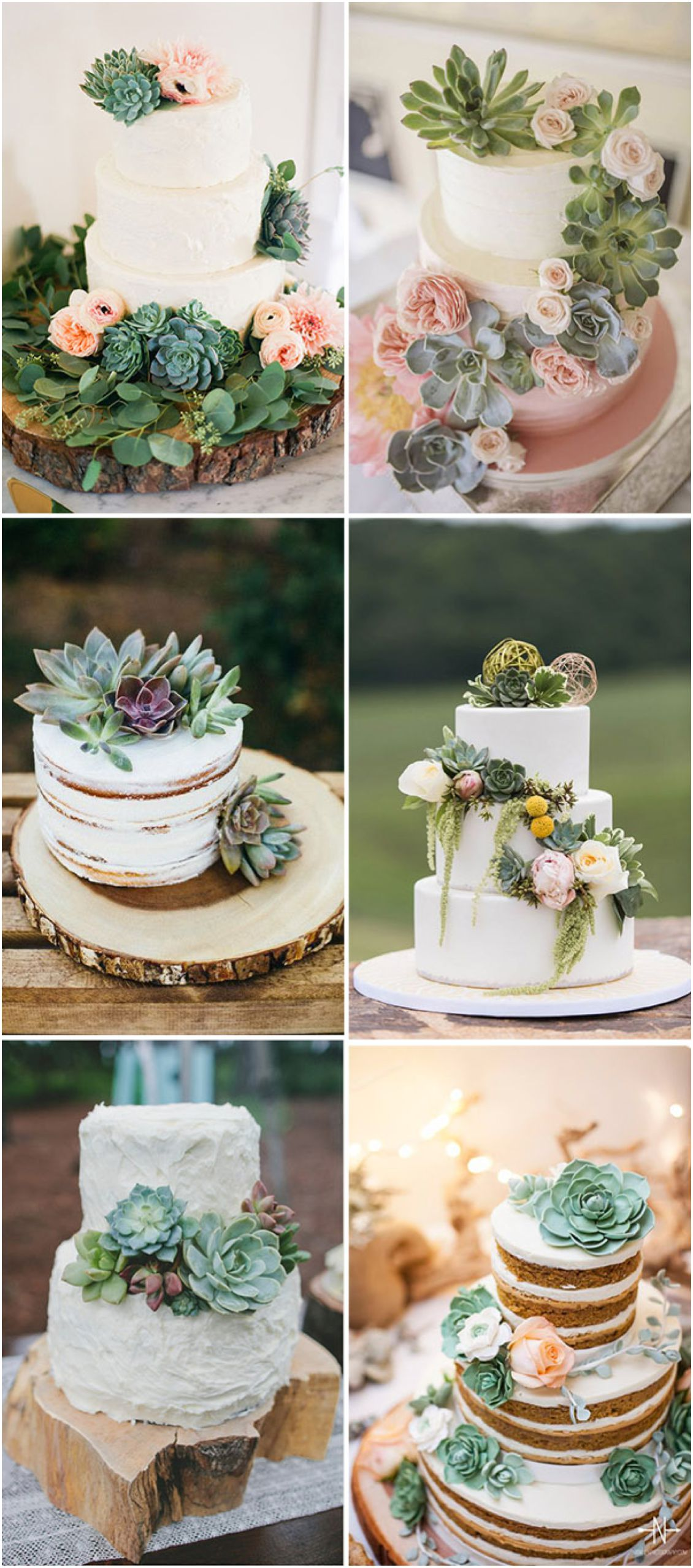 Wedding flower ideas succulent ideas pink book weddings for Wedding flowers ideas pictures