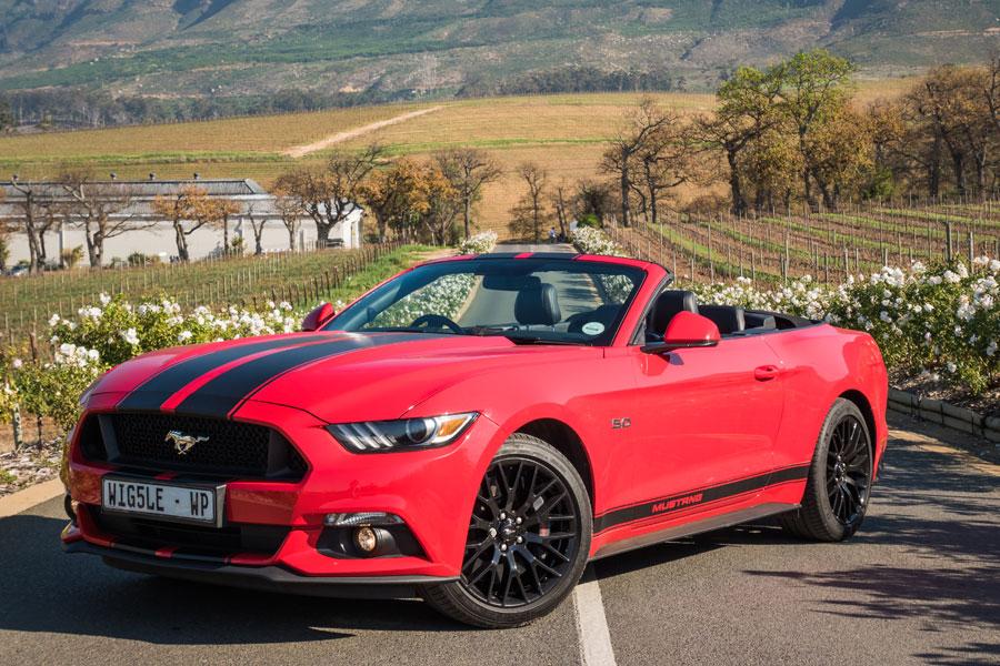 Wiggle Car Hire Cape Town