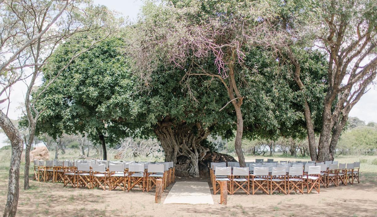 best bushveld wedding venues south africa