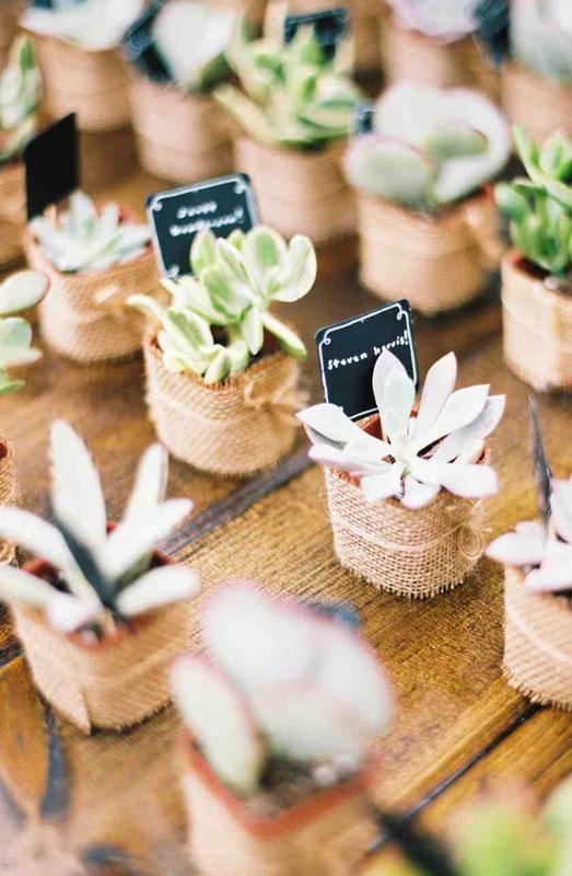 plants wedding favours
