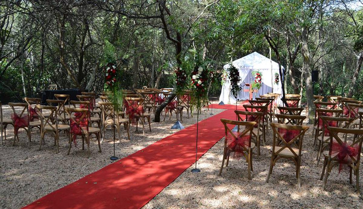 bush loerie wedding venue pretoria