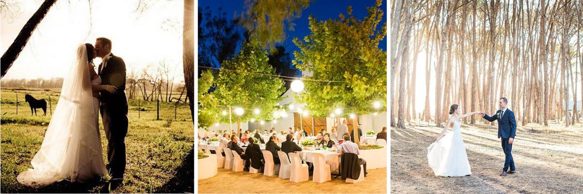 wedding venues cape winelands