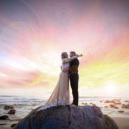 25 Weddings
