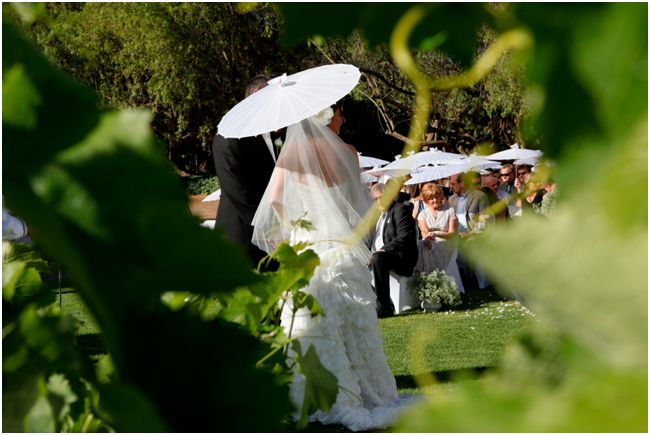 Cabrières Weddings & Vineyards - Wedding Venues Montagu