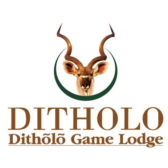 Orion – Dithõlõ Game Lodge