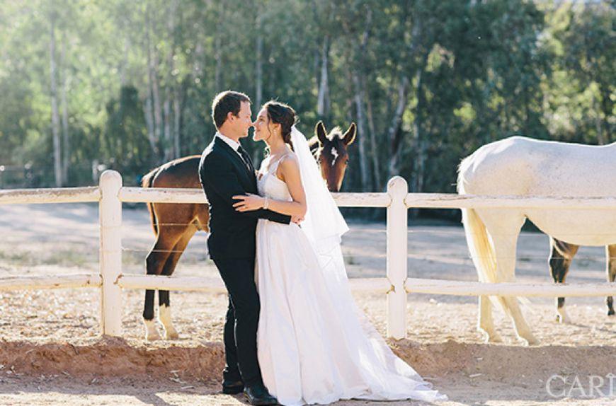 Rhebokskloof Wine Estate - Wedding Venues Paarl