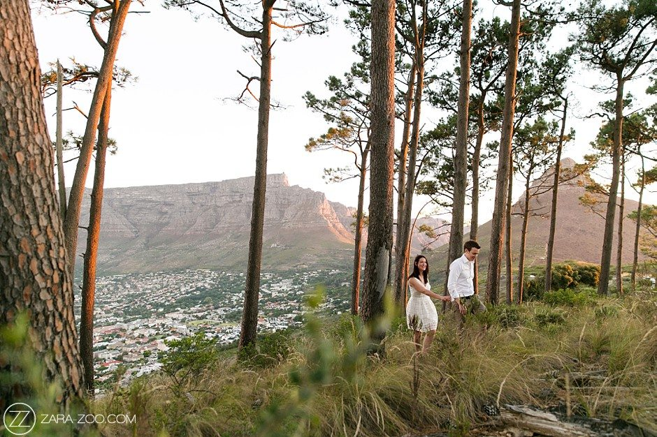 signal hill forest cape town