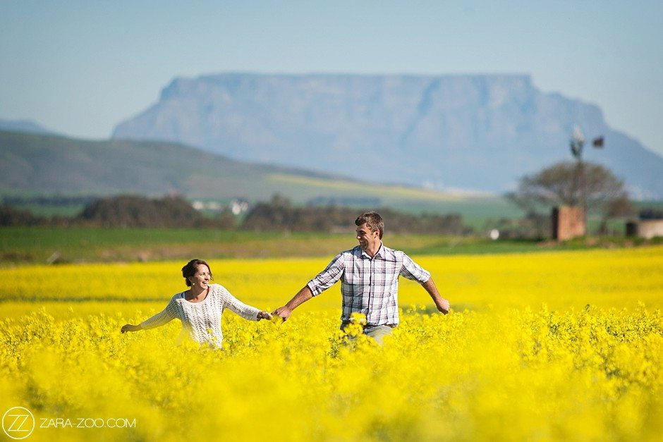 Canola Fields Cape Town