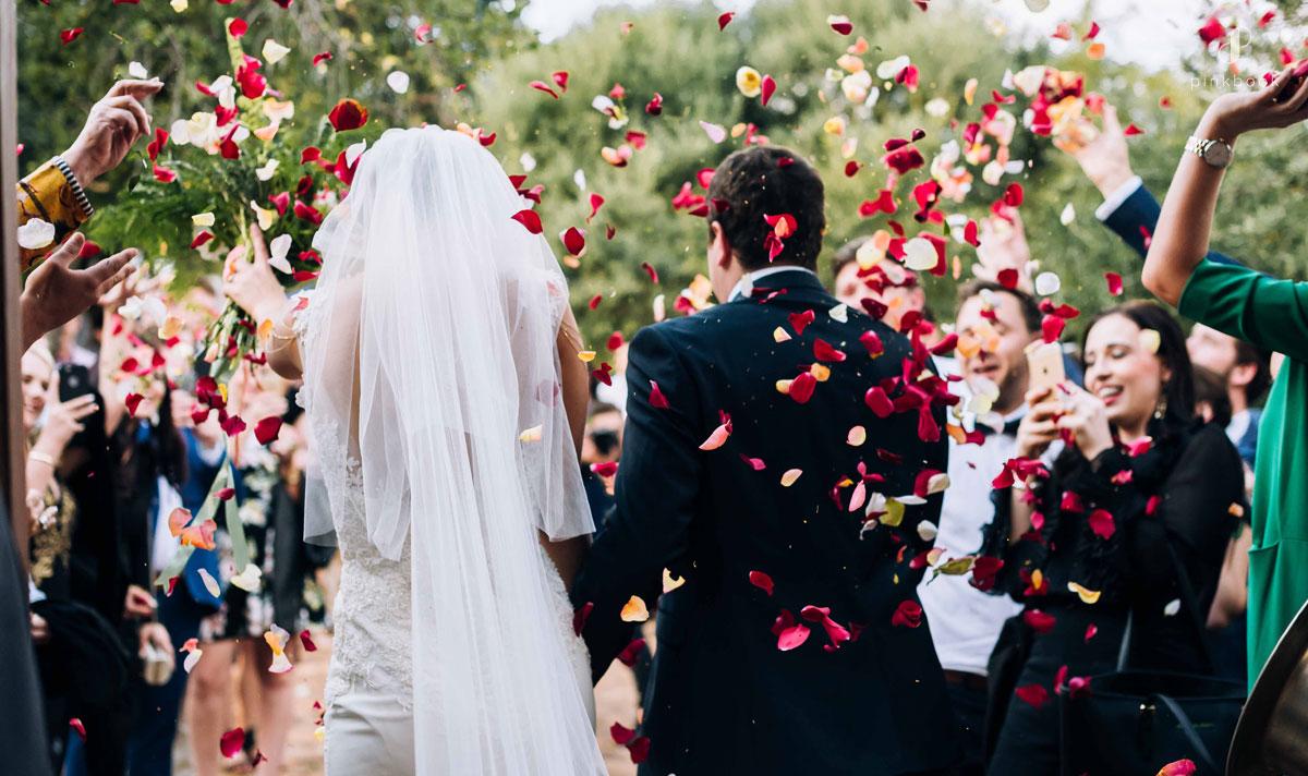 elopement vs wedding pink book