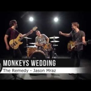Monkeys Wedding