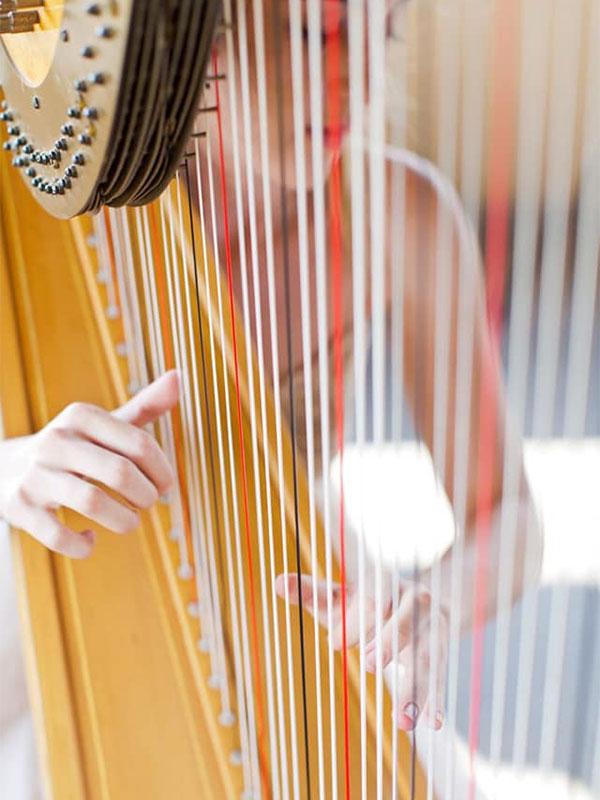 Harp Events SA - DJ & Live Bands Johannesburg