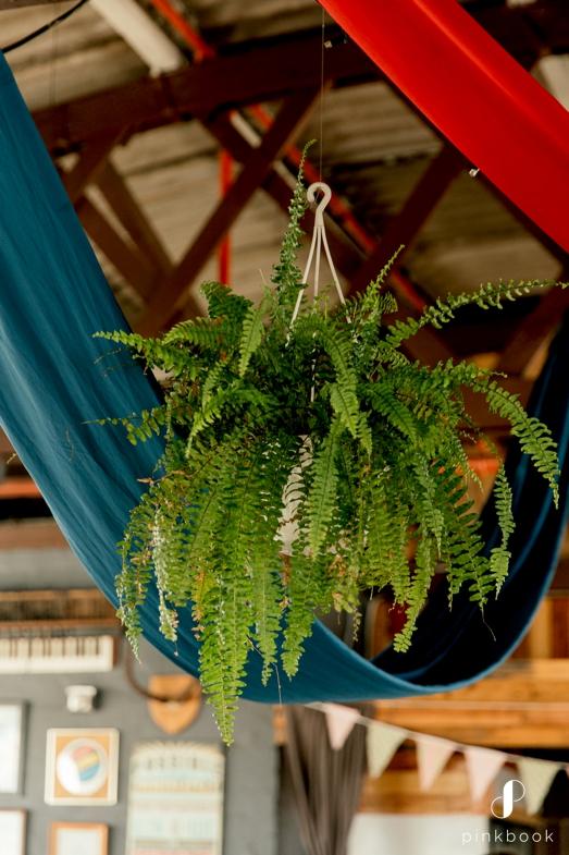 Green Fern Plants at Wedding