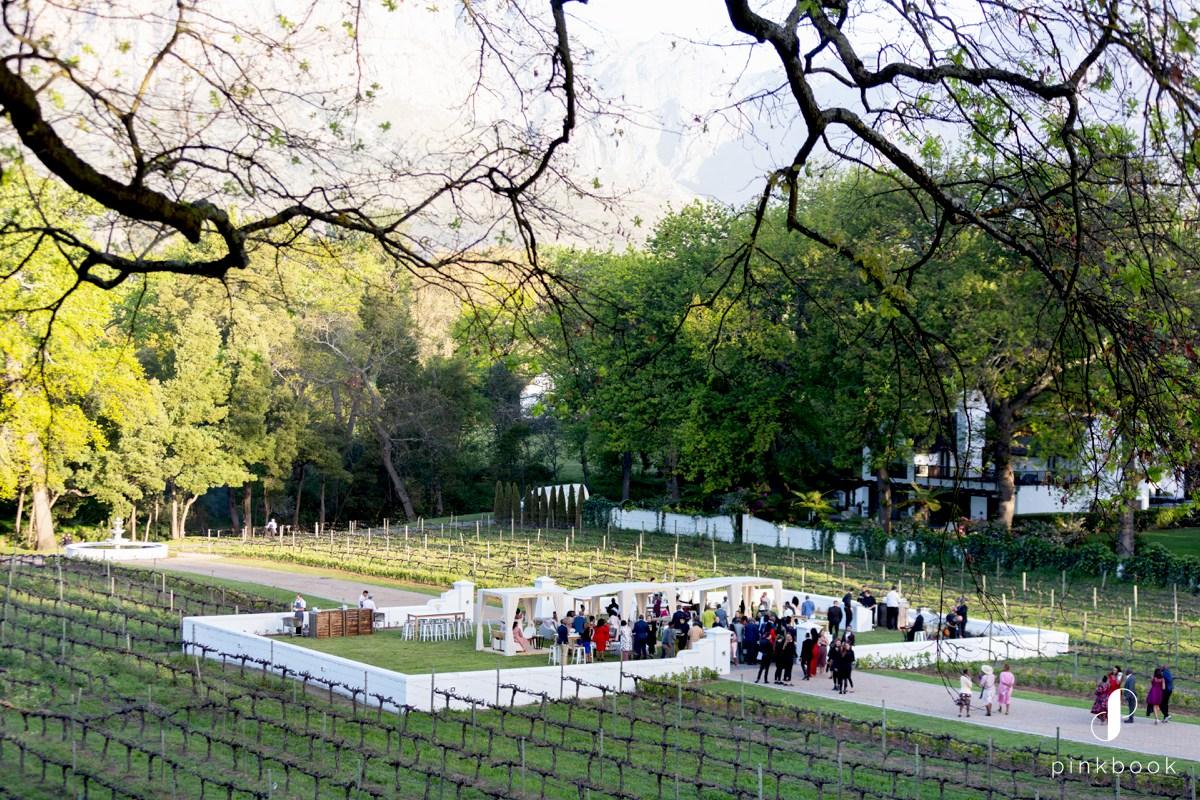 Molenvliet Vineyard Wedding Venue