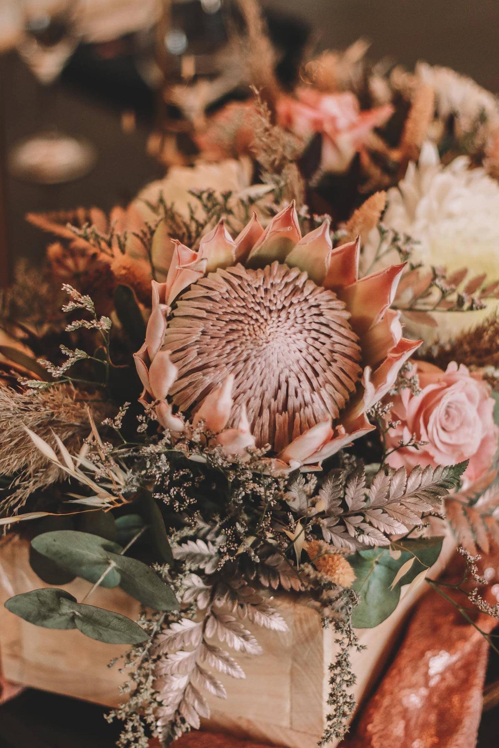 Robertson Florist - Flowers Robertson