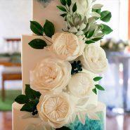 Samantha Liang Cake Artistry