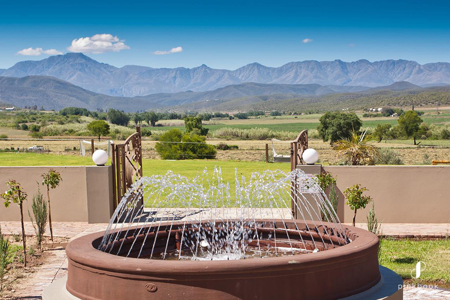 Weekend-Getaway-in-Cape-Town-Surval-Boutique-Olive-Estate-03