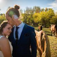The Wedding Journalist